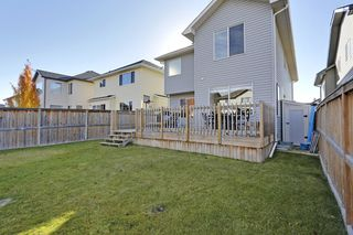 Photo 28: 145 Cranston Way SE in Calgary: House for sale : MLS®# C3640980