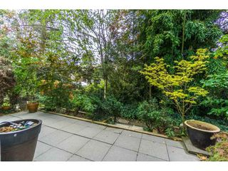 """Photo 20: 124 9979 140 Street in Surrey: Whalley Townhouse for sale in """"SHERWOOD GREEN"""" (North Surrey)  : MLS®# R2108711"""