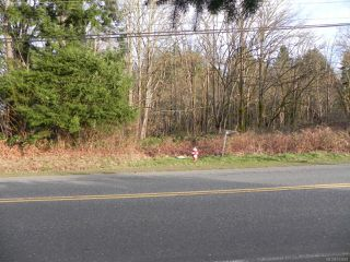 Photo 2: 3851 Royston Rd in ROYSTON: CV Courtenay South Land for sale (Comox Valley)  : MLS®# 743683