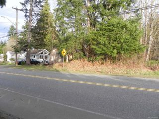 Photo 3: 3851 Royston Rd in ROYSTON: CV Courtenay South Land for sale (Comox Valley)  : MLS®# 743683