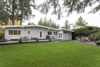 Photo 14: 1542 KIRKWOOD Road in Delta: Beach Grove House for sale (Tsawwassen)  : MLS®# R2139675