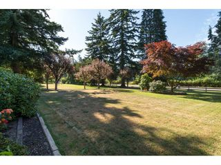 "Photo 2: 17725 20 Avenue in Surrey: Hazelmere House for sale in ""NCP 4"" (South Surrey White Rock)  : MLS®# R2184388"