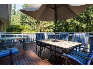 "Photo 14: 17725 20 Avenue in Surrey: Hazelmere House for sale in ""NCP 4"" (South Surrey White Rock)  : MLS®# R2184388"