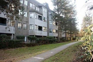 Photo 10: 509 9890 MANCHESTER Drive in Burnaby: Cariboo Condo for sale (Burnaby North)  : MLS®# R2191933