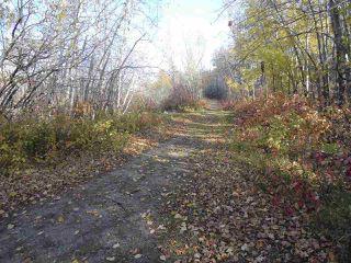 Photo 3: 17303 23 Avenue in Edmonton: Zone 56 Land Commercial for sale : MLS®# E4082090