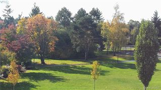 Photo 17: 102 940 Inverness Rd in VICTORIA: SE Quadra Condo for sale (Saanich East)  : MLS®# 774549