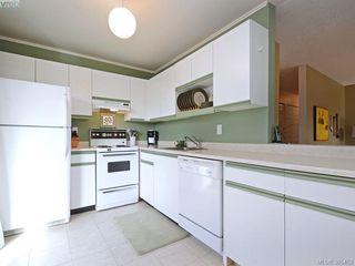 Photo 8: 102 940 Inverness Rd in VICTORIA: SE Quadra Condo for sale (Saanich East)  : MLS®# 774549