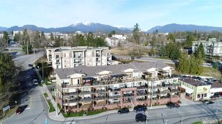"""Photo 19: 308 22327 RIVER Road in Maple Ridge: West Central Condo for sale in """"Reflections On The River"""" : MLS®# R2240954"""