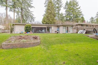 "Photo 39: 13496 57 Avenue in Surrey: Panorama Ridge House for sale in ""Panorama Ridge"" : MLS®# R2245203"