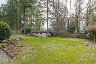 "Photo 37: 13496 57 Avenue in Surrey: Panorama Ridge House for sale in ""Panorama Ridge"" : MLS®# R2245203"