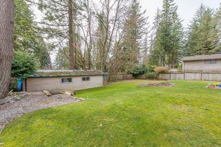 "Photo 38: 13496 57 Avenue in Surrey: Panorama Ridge House for sale in ""Panorama Ridge"" : MLS®# R2245203"