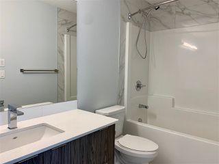 Photo 15: 9122 142 Street in Edmonton: Zone 10 House for sale : MLS®# E4136820