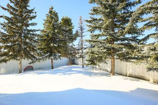 Photo 29: 4920 31 Avenue in Edmonton: Zone 29 House for sale : MLS®# E4147092
