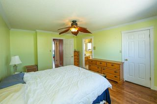 Photo 21: 4920 31 Avenue in Edmonton: Zone 29 House for sale : MLS®# E4147092