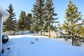 Photo 28: 4920 31 Avenue in Edmonton: Zone 29 House for sale : MLS®# E4147092