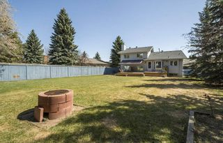Photo 26: 4364 148 Street NW in Edmonton: Zone 14 House for sale : MLS®# E4153615