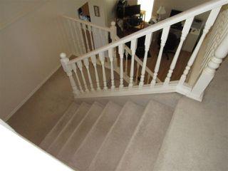 Photo 15: 5612 190A Street in Edmonton: Zone 20 House for sale : MLS®# E4154522