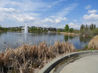 Photo 30: 20734 58 Avenue in Edmonton: Zone 58 House for sale : MLS®# E4160273
