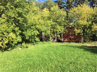 Photo 27: 59353 RR 192: Rural Smoky Lake County House for sale : MLS®# E4173547