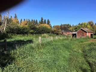 Photo 28: 59353 RR 192: Rural Smoky Lake County House for sale : MLS®# E4173547