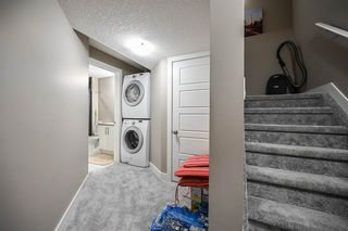 Photo 29: 3805 WHITELAW Place NW in Edmonton: Zone 56 House Half Duplex for sale : MLS®# E4192507
