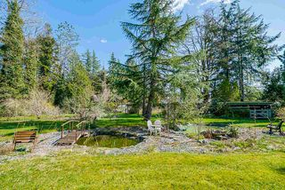 "Photo 19: 24233 54 Avenue in Langley: Salmon River House for sale in ""Salmon River Uplands"" : MLS®# R2448935"