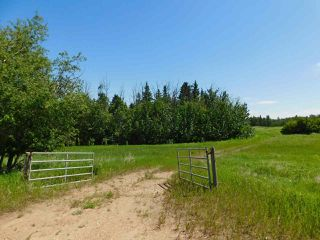 Photo 2: 56223 Rge Rd 231: Rural Sturgeon County Rural Land/Vacant Lot for sale : MLS®# E4201866