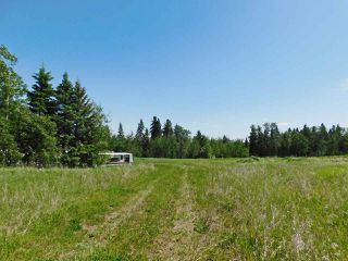 Photo 3: 56223 Rge Rd 231: Rural Sturgeon County Rural Land/Vacant Lot for sale : MLS®# E4201866