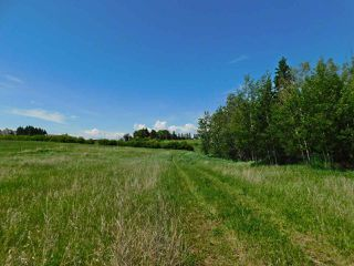 Photo 15: 56223 Rge Rd 231: Rural Sturgeon County Rural Land/Vacant Lot for sale : MLS®# E4201866