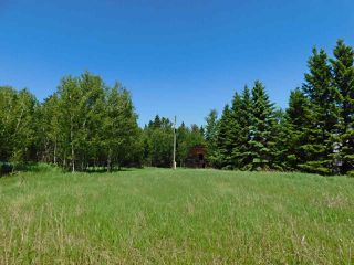 Photo 14: 56223 Rge Rd 231: Rural Sturgeon County Rural Land/Vacant Lot for sale : MLS®# E4201866