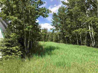 Photo 11: 56223 Rge Rd 231: Rural Sturgeon County Rural Land/Vacant Lot for sale : MLS®# E4201866