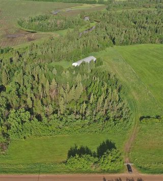 Photo 16: 56223 Rge Rd 231: Rural Sturgeon County Rural Land/Vacant Lot for sale : MLS®# E4201866