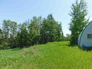 Photo 10: 56223 Rge Rd 231: Rural Sturgeon County Rural Land/Vacant Lot for sale : MLS®# E4201866