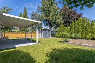 "Photo 30: 11672 STEEVES Street in Maple Ridge: Southwest Maple Ridge House for sale in ""SOUTHWEST MAPLE RIDGE - RIVER ROAD AREA"" : MLS®# R2471470"