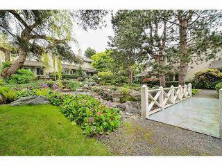 "Photo 19: 54 7613 WHITESPRAY Drive in Vancouver: Marpole Townhouse for sale in ""LANGARA SPRINGS"" (Vancouver West)  : MLS®# V1063410"