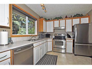 Photo 4: 19 MARANDA Close NE in Calgary: Marlborough House for sale : MLS®# C4019203