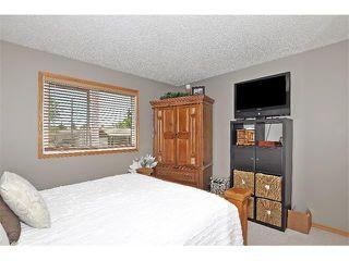 Photo 11: 19 MARANDA Close NE in Calgary: Marlborough House for sale : MLS®# C4019203