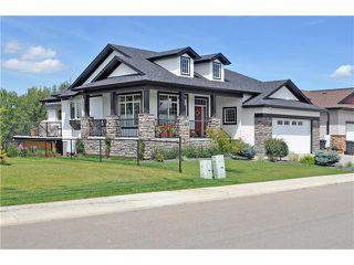 Photo 42: 244 Willow Ridge Manor: Black Diamond House for sale : MLS®# C4075045