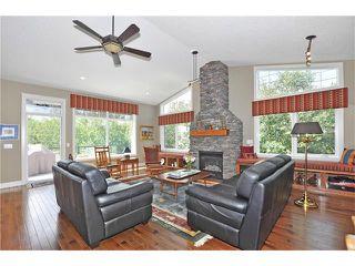 Photo 18: 244 Willow Ridge Manor: Black Diamond House for sale : MLS®# C4075045