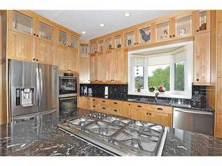 Photo 13: 244 Willow Ridge Manor: Black Diamond House for sale : MLS®# C4075045