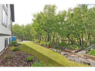 Photo 34: 244 Willow Ridge Manor: Black Diamond House for sale : MLS®# C4075045