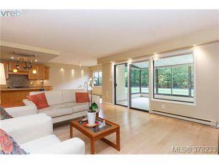 Photo 5: 104 420 Linden Ave in VICTORIA: Vi Fairfield West Condo for sale (Victoria)  : MLS®# 759474