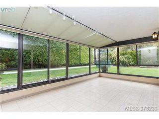 Photo 3: 104 420 Linden Ave in VICTORIA: Vi Fairfield West Condo for sale (Victoria)  : MLS®# 759474