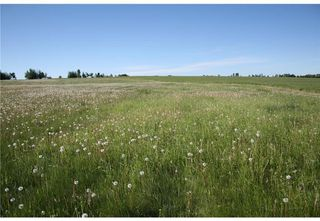 Photo 13: 2 4141 Twp Rd 340: Rural Mountain View County Land for sale : MLS®# C4123232