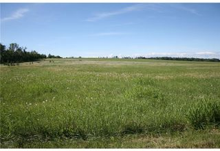 Photo 1: 2 4141 Twp Rd 340: Rural Mountain View County Land for sale : MLS®# C4123232
