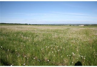 Photo 14: 2 4141 Twp Rd 340: Rural Mountain View County Land for sale : MLS®# C4123232