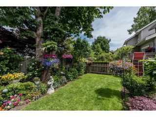 """Photo 19: 22 7171 STEVESTON Highway in Richmond: Broadmoor Townhouse for sale in """"CASSIS"""" : MLS®# R2181164"""