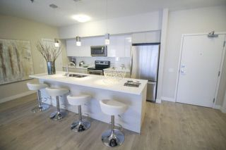Photo 13: 105 70 Philip Lee Drive in Winnipeg: Crocus Meadows Apartment for sale (3K)  : MLS®# 1723226