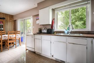 Photo 5: 20110 53 Avenue in Langley: Langley City House for sale : MLS®# R2265736