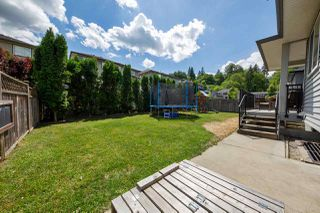 Photo 20: 23966 MCCLURE Avenue in Maple Ridge: Albion House for sale : MLS®# R2273592